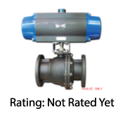 Full Port Cast-Iron Ball Valve Series 165